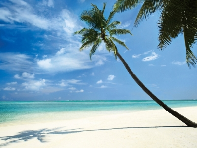наша поездка на Мальдивские острова